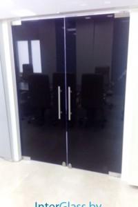 Распашная стеклянная дверь №9