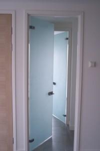 Распашная стеклянная дверь №1