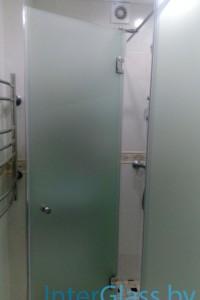 Распашная стеклянная дверь №19