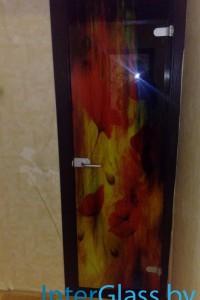 Распашная стеклянная дверь №10