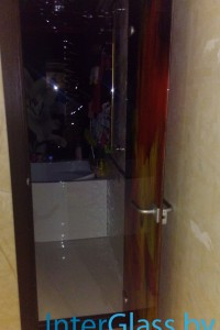 Распашная стеклянная дверь №11