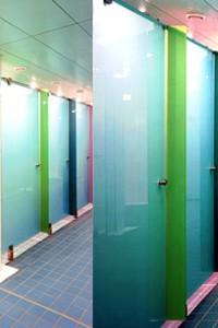 Распашная стеклянная дверь №17